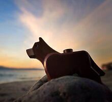 Ruff. by bricksailboat