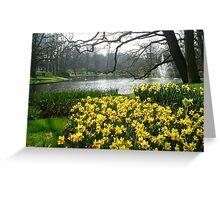 Daffodils in the Keukenhof Greeting Card
