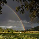 Scotland - Appin Rainbow by Angie Latham