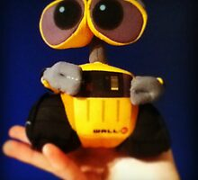 WALL-E Photograph by TimeLordVoldy