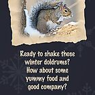 Party Invitation - Eastern Gray Squirrel - Sciurus carolinensis by MotherNature