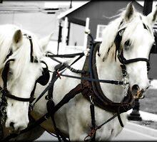 White Horses  by ArtbyDigman