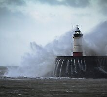 Newhaven Lighthouse by willgudgeon