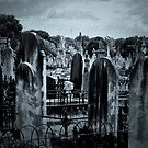 Melbourne Cemetery by Jeanette Varcoe.