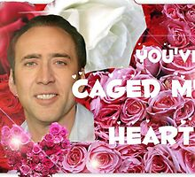 You've Caged My Heart Valentines Day by MarioGirl64