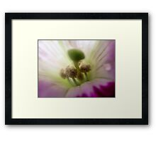 A Whole New World 1 Framed Print