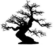 bonsai by foggraven