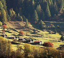 October sun in Lötschental (Switzerland) by Arie Koene