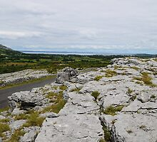 The Burren County Clare Ireland - Overlooking Galway Bay by Sean  Carroll