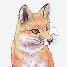 Fox by shiro