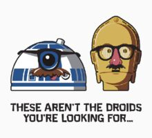 These aren't the droids you're looking for... by Nellow