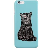 Smug Cat is Smug iPhone Case/Skin