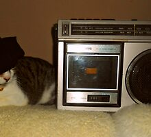 Radio Cat Takes A Nap by smilku