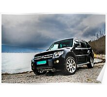Pajero chilling at the beach Poster