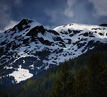 Mountains at Whistler by Emi Brown