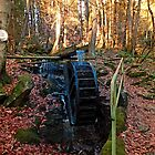 Water wheel in the wood by Patrick Jobst