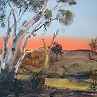 Flinders Ranges - Parachilna/Blinman Creek by Kay Cunningham