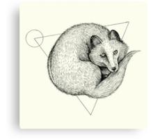 Wildlife Analysis V Canvas Print
