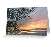 Two Tree Point, Adventure Bay HDR, Bruny Island, Tasmania Greeting Card