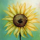 Sunflower by Helen Lush