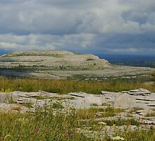 The Burren Countryside County Clare Ireland by Sean  Carroll