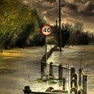 Yalding Floods  by larry flewers