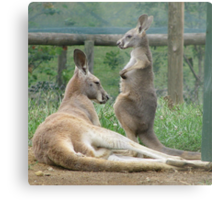 Do I Have A Pouch Mum? Metal Print