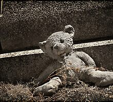 "Graveyard Adornment #19 - "" Weathered Teddy "" by Malcolm Heberle"