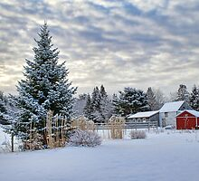 Winter at its Finest Hour by Shonda Hogan