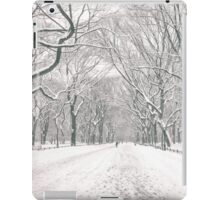 Central Park - Poet's Walk - New York City iPad Case/Skin