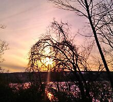 DAY IS DONE ON CAYUGA LAKE by JoAnnHayden