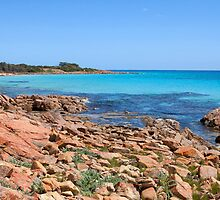 Eagle Bay Panorama with a little Dry Brush added by Leonie Mac Lean