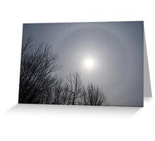 Sun Halo Through the Trees Greeting Card
