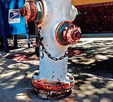 Collection: American Firehydrants: 7 by Awardconcepts