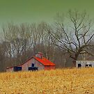 Harvest Home by Grinch/R. Pross