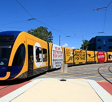 New Gold Coast Tram by Noel Elliot