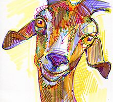 Goat drawing by Gwenn Seemel