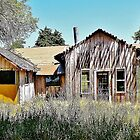 Additions to the Abandoned Home in the Santa Ynez Valley by Martha Sherman