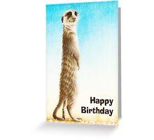 Meerkat Birthday Card Greeting Card