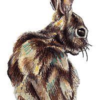 Rabbit by Kelly  Gilleran