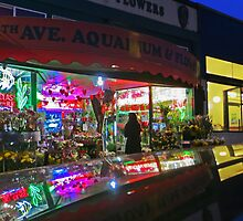 The Ave Aquarium and Flower Shop by David Denny