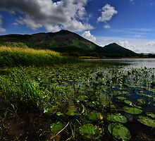 Bassenthwaite by English Landscape Prints