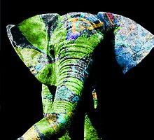 The Decorated Elephant by Bobbie Sansom