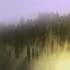 Mist by Nev3r