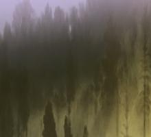 Mist Sticker