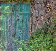 Forgotten doorway by Mortimer123