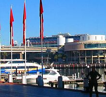 Darling Harbour, Sydney - 2011 by Bruce Northcott