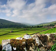 Swaledale Views by English Landscape Prints