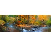 Brush Creek  Photographic Print