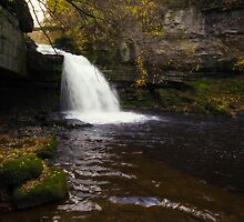 West Burton Waterfall by Stephen Smith